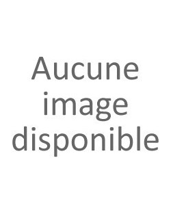 Cartouche RICOH 405689
